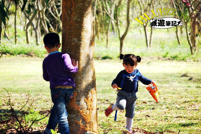 暨南大學櫻花-05.jpg