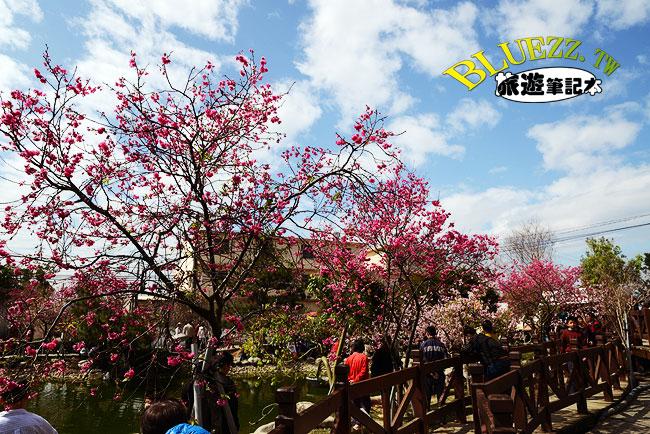 芬園花卉生產休憩園區-08.jpg