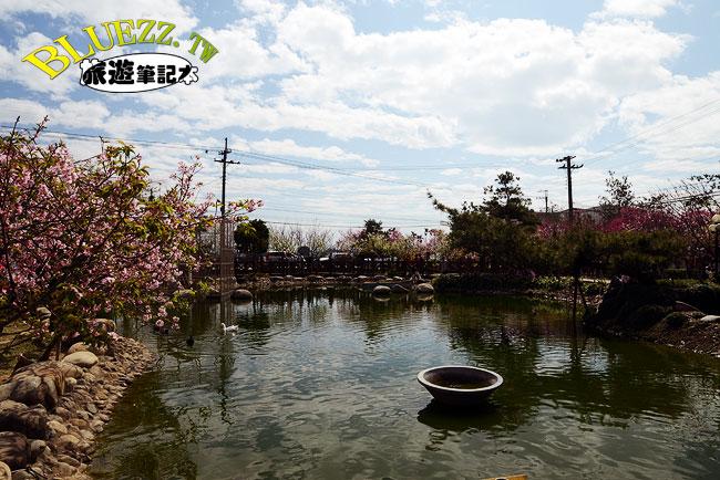 芬園花卉生產休憩園區-09.jpg
