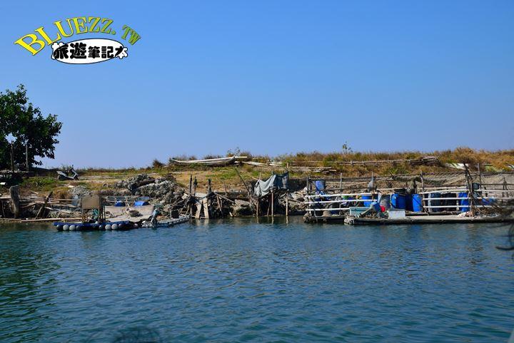 台江生態文化園區-DSC_6052.JPG