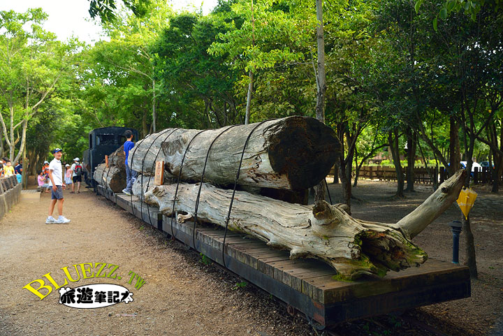 羅東林業文化園區(惡作劇2吻拍攝場景)-03.jpg