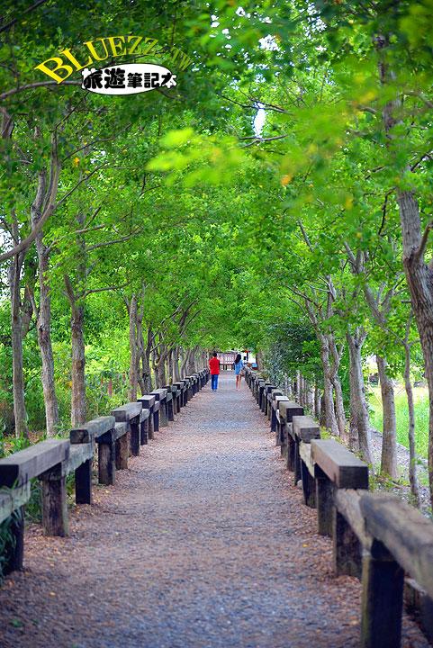 羅東林業文化園區(惡作劇2吻拍攝場景)-23.jpg