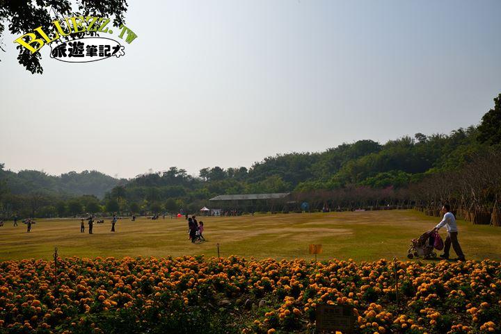 南元休閒農場-DSC_6693.JPG