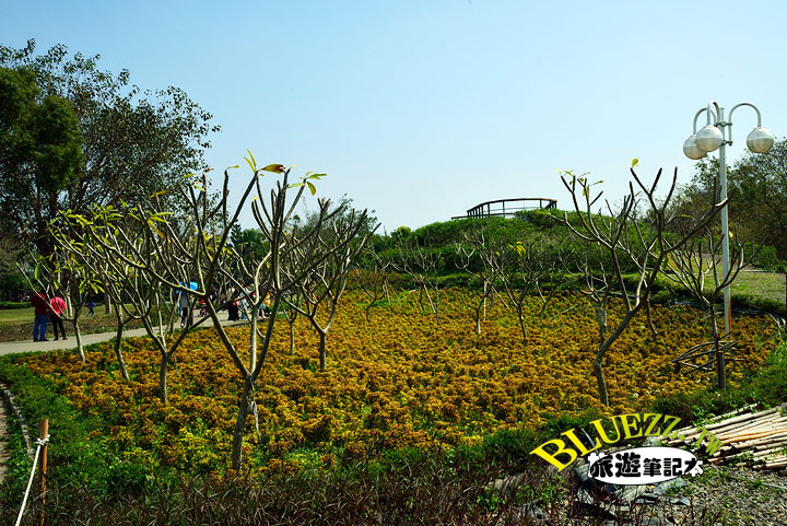 費茲洛公園 擁花坡