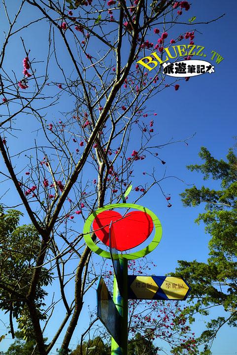 百果山克林姆莊園 12.櫻花