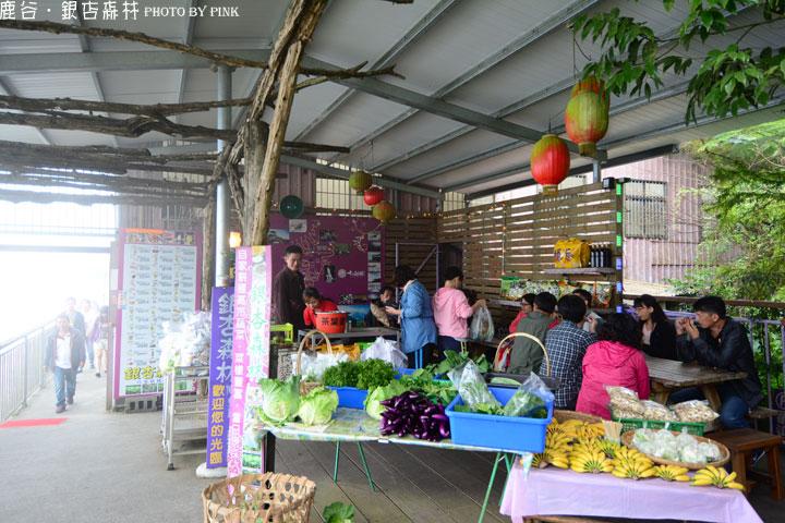 【鹿谷餐廳】銀杏森林景觀餐廳-嚐美食、喝好茶、賞美景-DSC_7196.jpg