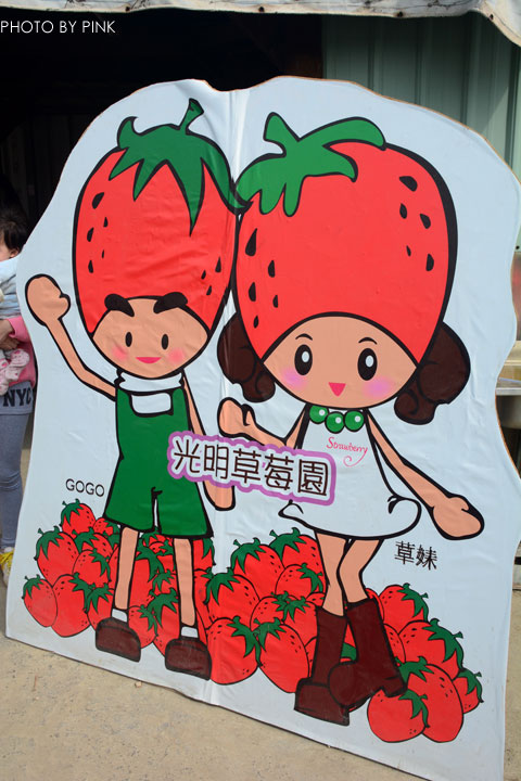 【國姓草莓】光明草莓園-粉紅莓果香甜上市囉!-DSC_2685.jpg
