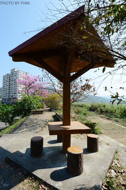 【南投景點】貓羅溪畔絕美「風鈴樹」粉紅盛開中-DSC_4062.jpg