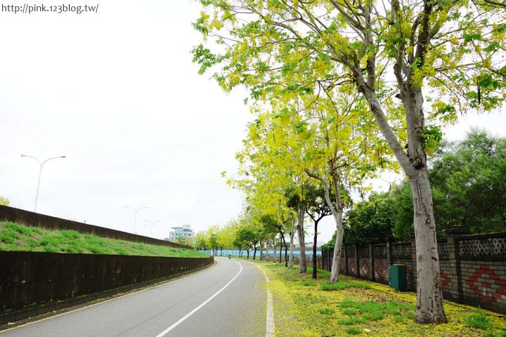 最美的黃金大道「中投公路阿勃勒」美麗盛開中…-DSC00546.jpg