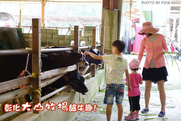 【彰化景點】大山休閒牧場。擠牛奶、餵牛牛、尚青的鮮奶置加啦!-1DSC02260.jpg