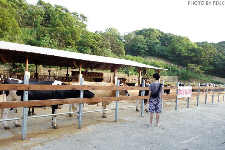 【彰化景點】大山休閒牧場。擠牛奶、餵牛牛、尚青的鮮奶置加啦!-DSC02298.jpg