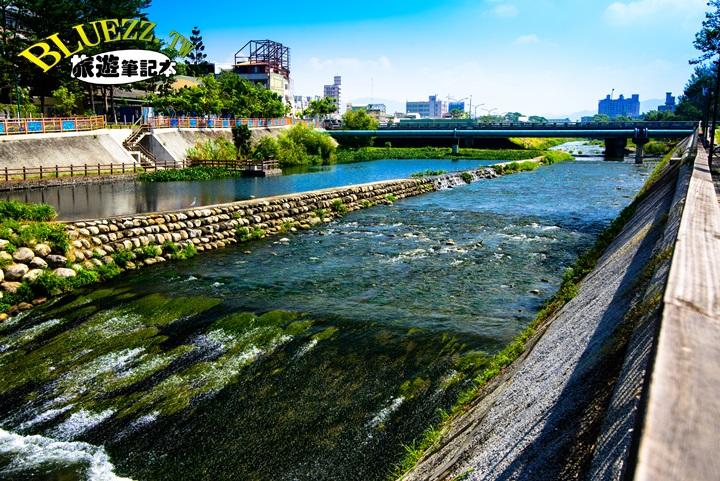 興大康橋-DSC_4690.jpg