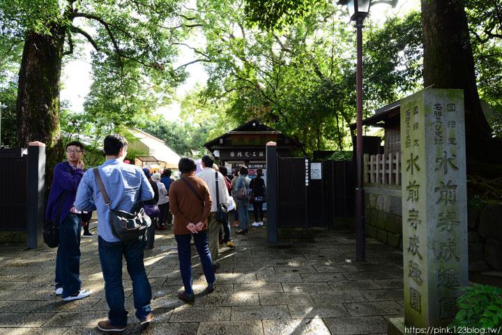 【日本九州】熊本水前寺成趣園。回遊式庭園令人駐足!-DSC_7190.jpg