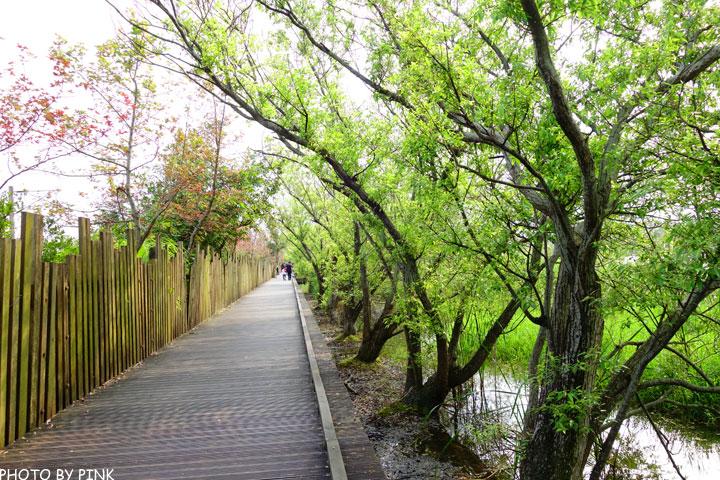 【宜蘭景點】羅東林業文化園區。慢步森林鐵道,享受大自然的洗禮!-DSC08612.jpg