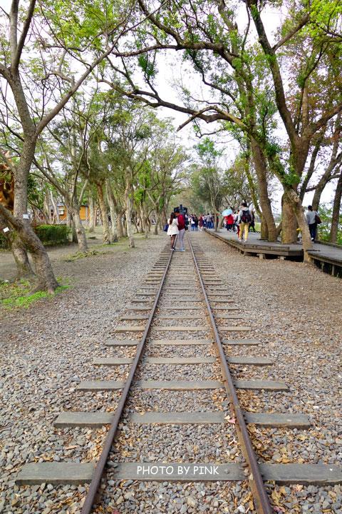 【宜蘭景點】羅東林業文化園區。慢步森林鐵道,享受大自然的洗禮!-DSC08631.jpg