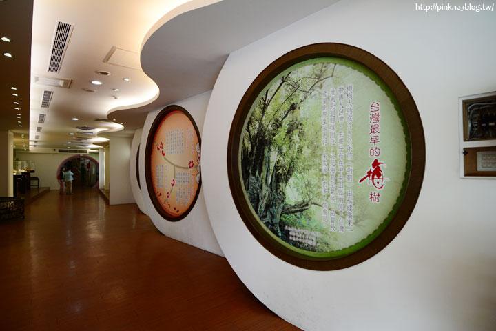 【嘉義梅山景點】梅問屋「梅子元氣館」。以梅子為主題的觀光工廠!-DSC_4109.jpg