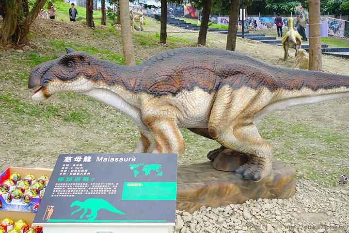 【員林新景點】百果山探索樂園。天啊,我是到侏羅紀公園了嗎?-DSC01975.jpg
