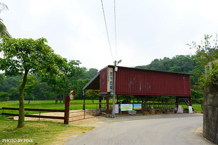 【彰化市景點】日月山景休閒農場。來此可享受親子同遊/餵牛體驗/休閒烤肉/美食餐廳,超好玩的農場新遊憩!-DSC_0347.jpg