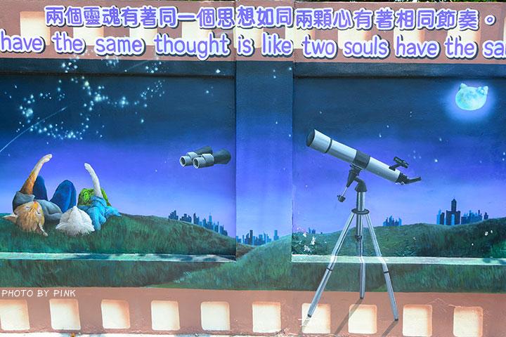 【嘉義布袋景點】布新國小貓咪彩繪牆。讓我們一起見證喵星人的愛情故事!(就在高跟鞋教堂旁)-DSC_1680.jpg