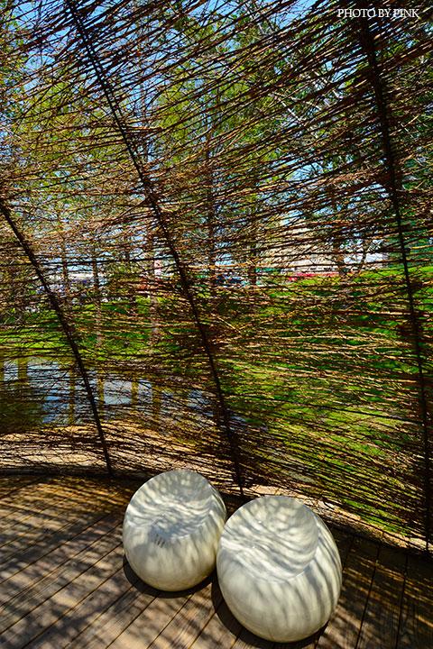 【台中南屯景點】惠宇建設-森青自然共生。生態水景、湖畔森林,IG熱門打卡基地!-DSC_3222.jpg