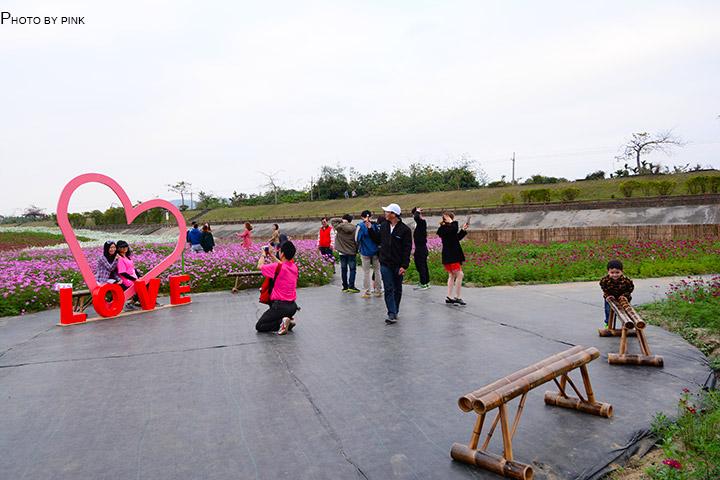 【2018南投花海】貓羅溪景觀花海,繽紛登場!-DSC_7670.jpg