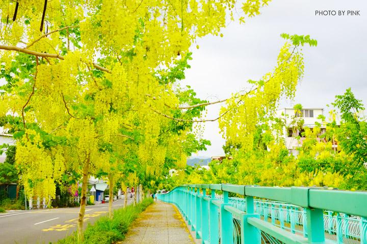 【南投阿勃勒】南投市福崗路上下起了黃金雨,季節限定阿勃勒美麗盛開中。-DSC03085.jpg