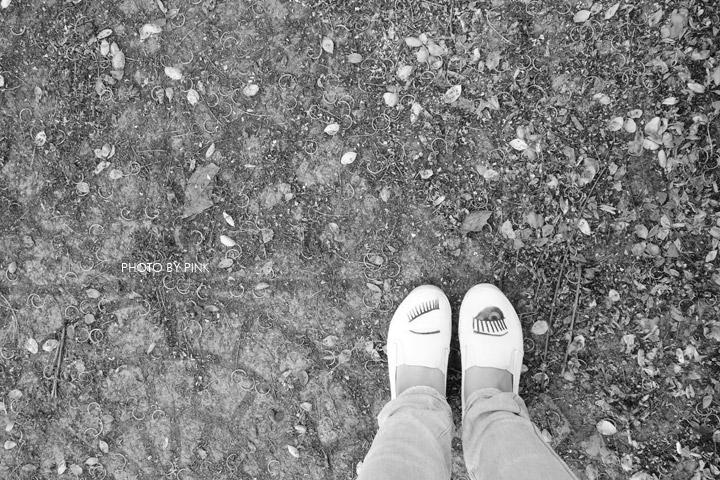 【南投阿勃勒】南投市福崗路上下起了黃金雨,季節限定阿勃勒美麗盛開中。-DSC03168.jpg