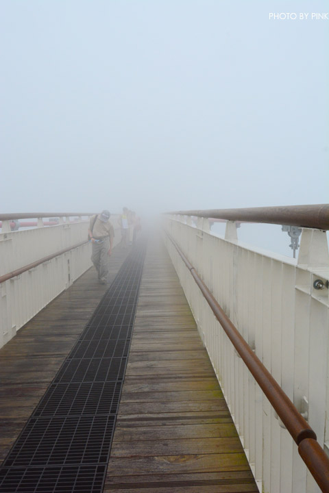 【嘉義梅山景點】太平雲梯景觀吊橋。全台最高景觀吊橋,走在雲梯,雲霧圍繞,猶如仙境!-DSC_5509.jpg