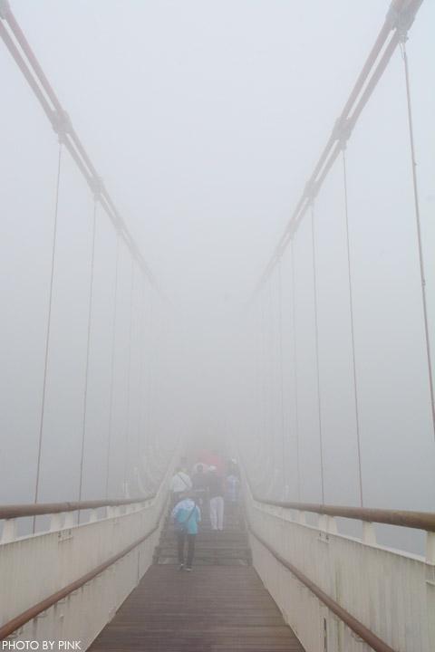 【嘉義梅山景點】太平雲梯景觀吊橋。全台最高景觀吊橋,走在雲梯,雲霧圍繞,猶如仙境!-DSC_5514.jpg