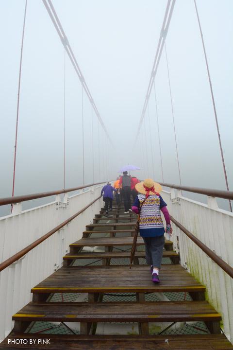 【嘉義梅山景點】太平雲梯景觀吊橋。全台最高景觀吊橋,走在雲梯,雲霧圍繞,猶如仙境!-DSC_5520.jpg