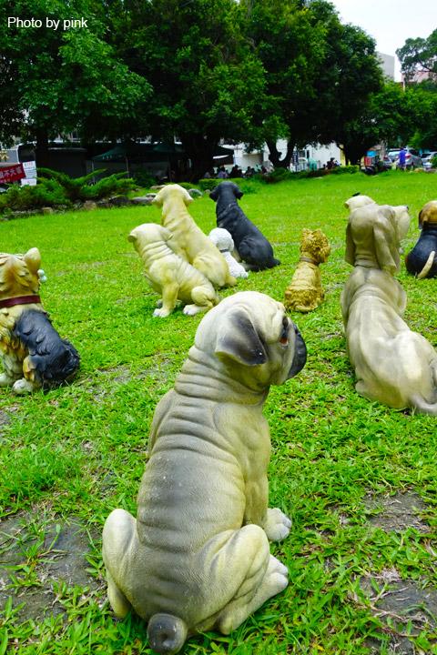 【員林新景點】員林公園出現新嬌客,四十多隻旺星人出沒,這是怎麼回事!?-DSC05505.jpg
