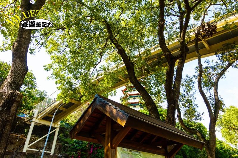 八卦山大佛風景區-DSC05784.jpg