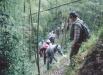 休閒農業自然生態體驗之旅-休閒農業自然生態體驗之旅