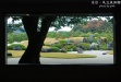 島根足立美術館-日本第一,庭園雜誌評選之最!!-0DSC_0863.jpg