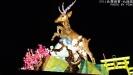 2014台灣燈會在南投-2月7日北燈區點燈(活動已結束)-0_SAM0884.jpg