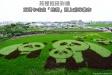 苑裡熊貓稻田彩繪-1DSC_5782.jpg