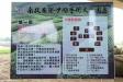 DSC_6880.jpg-DSC_6880