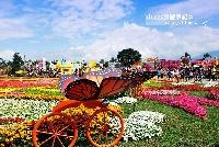 2011新社花海節台中國際花毯節開幕