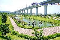 苗栗後龍高鐵公園