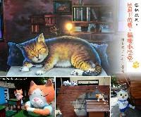 貓咪小學堂~跟著貓咪上學趣!