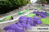 百果山兒童樂園