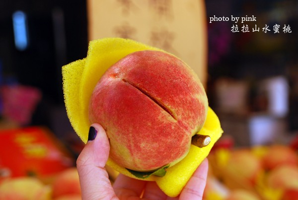 【桃園拉拉山旅遊】必吃香甜水蜜桃、大漢橋高空彈跳