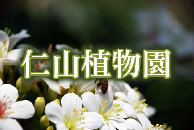仁山植物園-仁山植物園.jpg