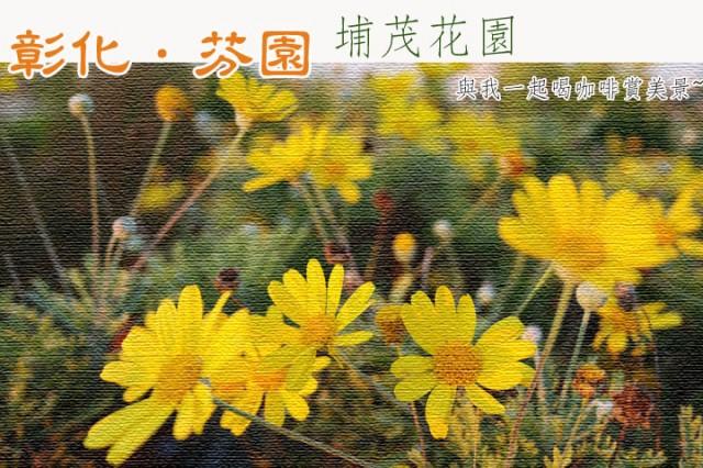 彰化芬園埔茂花市-0SAM_0634.jpg
