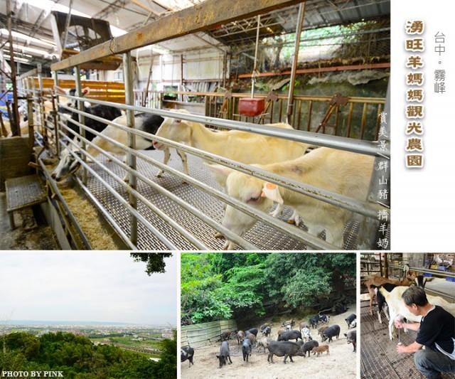 湧旺羊媽媽觀光農園-1.jpg