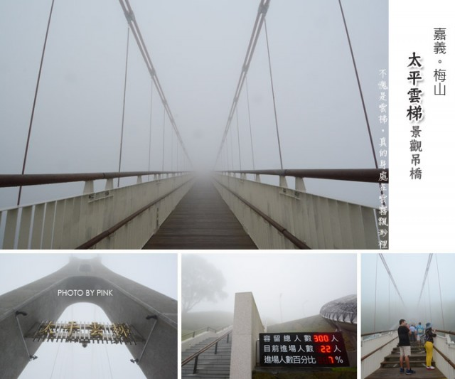 太平雲梯景觀吊橋-1.jpg
