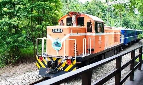 綠色隧道巧遇CK-124-01.jpg