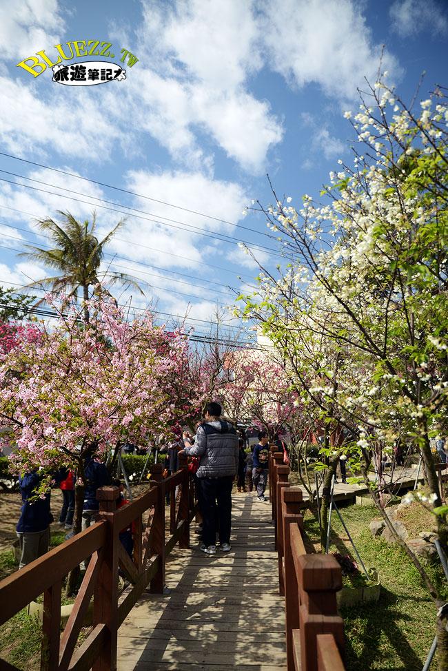 芬園花卉生產休憩園區-02.jpg