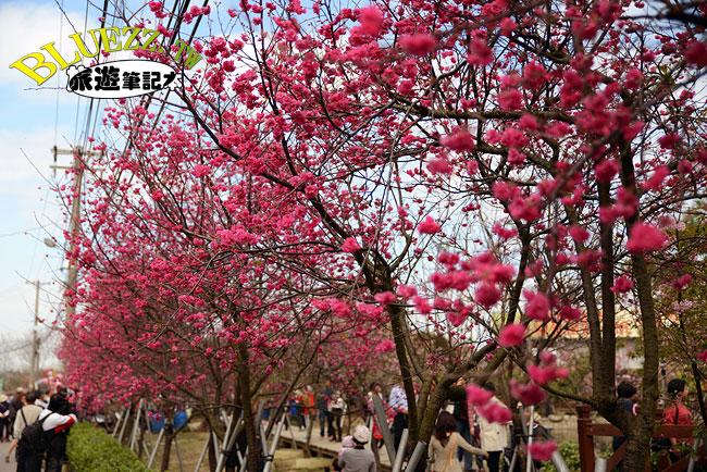 芬園花卉生產休憩園區-03.jpg