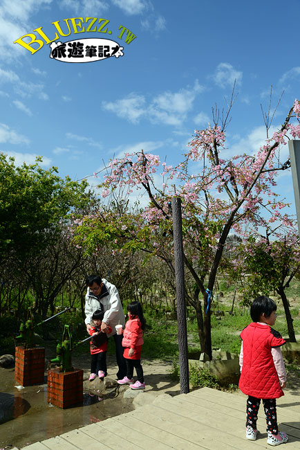 芬園花卉生產休憩園區-19.jpg